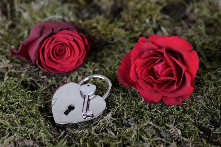 роза и замок