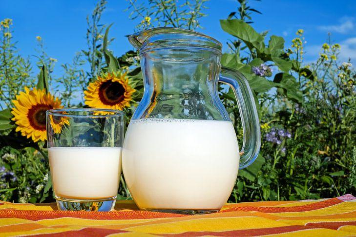 Опровергнут популярный миф о молочных продуктах